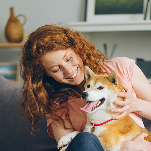 woman sitting on a couch with her shiba inu